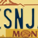 Vanity LES & JAS license plate