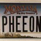 Montana vanity PHEEONA PHIONA FIONA license plate Shrek Princess Fio Ogre King