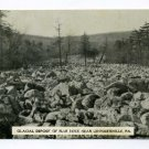 Glacial Deposit of Blue Rock near Lenhartsville Pennsylvania postcard