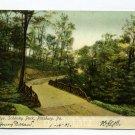 Bridal Bridge Schenley Park Pittsburgh Pennsylvania postcard