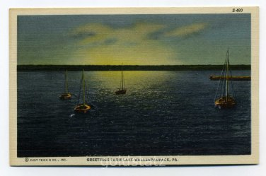 Greetings from Lake Wallenpaupack Pennsylvania #S-1048 1951 postcard
