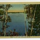 Greetings from Lake Wallenpaupack Pennsylvania #S-460 postcard