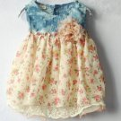 Denim Floral Baby Dress Preemie Newborn Girls Dress Summer and Spring Dress