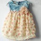 Cute Newborn Girls Dress Denim Printed Floral Baby Dress Summer and Spring Dress