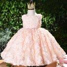 Georgette Ballgown Net 9-12 Months Dress for Infant Girls Tutu Dress First Birthday Pink Dress