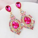 Free Shipping Hotpink Earrings Hollow Earrings for Princess New Fuchsia Color Earrings