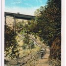 Watkins Glen New York Postcard Jacob's Ladder Curteich A-52134 1913