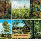 Luxemburg Postcard Multi View Forest Flowers