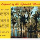 Nature Postcard Legend Of The Spanish Moss