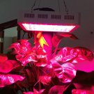 300W Plant Growth LED Lamp Garden Greenhouse Plant Seedling Light