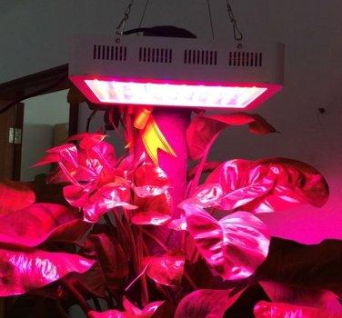 300W Plant Growth LED Lamp Garden Greenhouse Plant Seedling Light