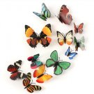 12Pcs 3D Butterfly Brooch Magnet Wall Sticker Home Room Curtain Wedding Decoration
