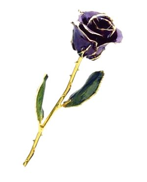 Rose-24Kt Gold-Purple