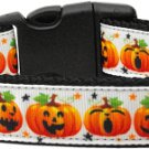 NEW PUMPKIN FACES Size Med Dog Collar