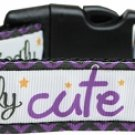 NEW WICKEDLY CUTE Size Med Dog Collar