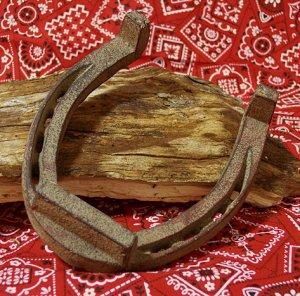 Extra Large Cast Iron Horse Shoe