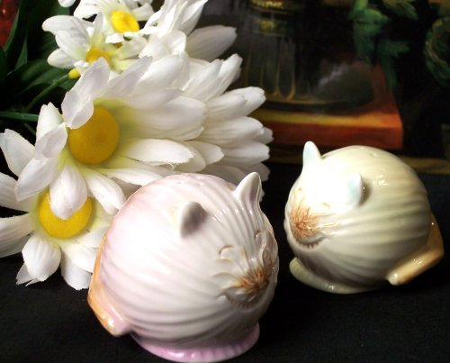 "Enesco ""Home Grown"" CAT Salt & Pepper Shakers"