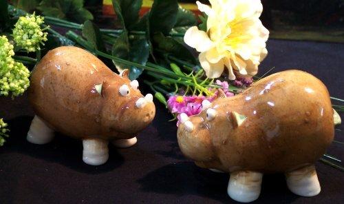 """Enesco """"Home Grown"""" HIPPO Salt & Pepper Shakers"""