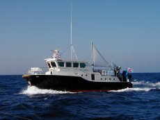 Support Vessel 43