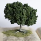 Harry Potter Tree Book (And the Chamber of Secrets)