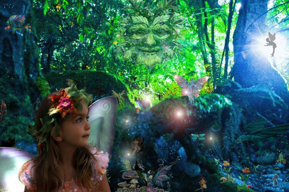 Custom Faery Fantasy Digital Portrait CANVAS Framed Print 12 x 8