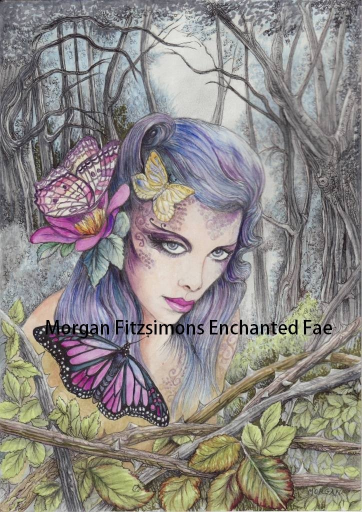 Butterfly Kisses Spirit of The Wildwood 24 x 16 CANVAS FRAMED PRINT