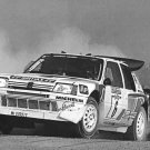 Peugeot 205 T16 rallying at 1986 Sanremo - Rally Car Photo Print