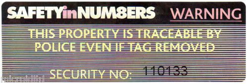 HOLOGRAM SECURITY LABELS  (Pack of 50)