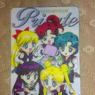 Sailor Moon Textured Plastic Sticker Card F