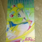 Sailor Moon Textured Plastic Sticker Card J
