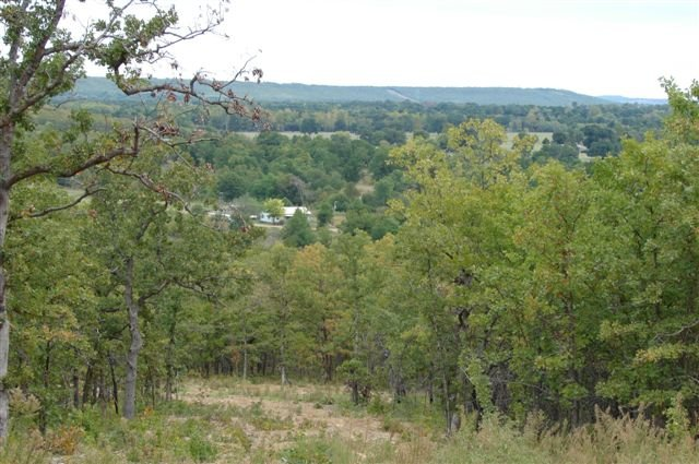 20 Acres Parcels! McIntosh County, Okahoma! Wooded! Surveyed!