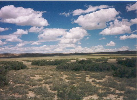 160 Acres Rawlins, Wyoming! Owner Will Carry!