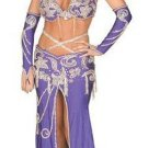 0211L-W92733, 4 Piece Persian Princess Costume with Beaded Details.