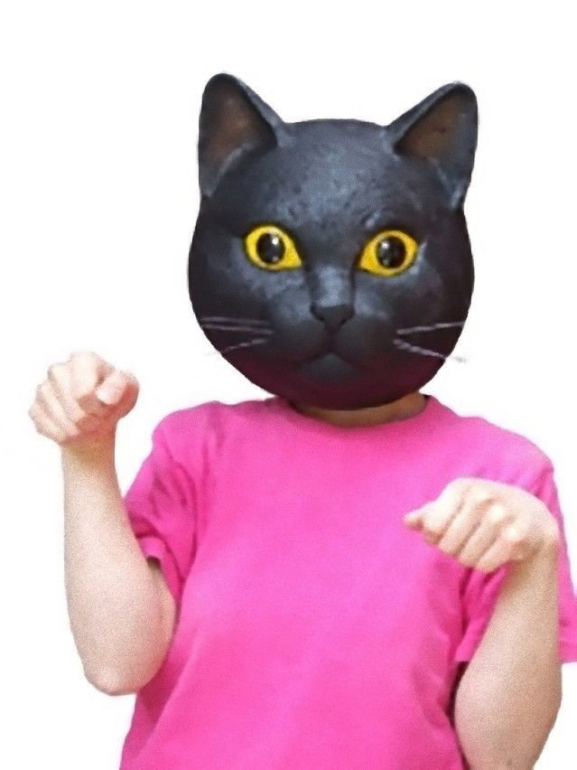 Rubber Black Cat Mask Ivent , Halloween ,  Party , Costume Play NEW