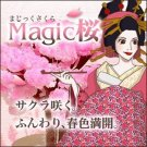 Magic Cherry Blossom Japanese Sakura Maiko Ivent, Oh, it is mysterious! NEW F/S