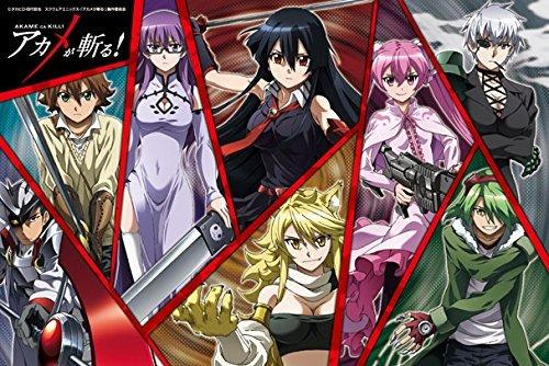 Akame ga Kill Night Raid Japan Anime Comic Jigsaw Puzzle 1000 Pieces 50x75cm JP