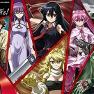 Akame ga Kill Night Raid Japan Anime Comic Jigsaw Puzzle 1000 Pieces 50x75cm JP