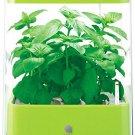 U-ING Green Farm Cube Hydroponic Grow Box Vegetable, herb cultivating unit Green