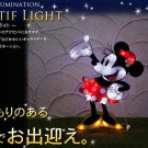 ❦Disney Minnie Mouse 2D LED Illumination Light Garden light Wall Christmas FS❦
