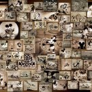 Disney Mickey Mouse 1000 Piece Jigsaw Puzzle Monochrome movie collection Tenyo