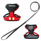 Tokyo Disney Resort Mickey & Minnie motif for harness with lead for dog Item