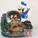 Disney Chip & Dale & Donald Duck Music box Snow Globe Strawberry Garden Figure