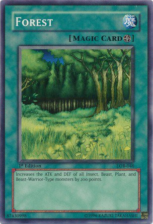 Yugioh Card Forest - LOB-046 - Common Unlimited Edition