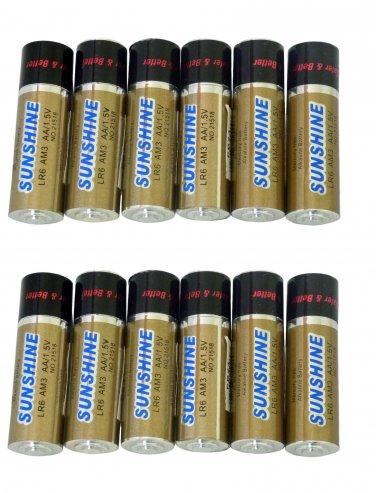 12 AA AA Battery Shape Pill Boxes Secret Stash Cases