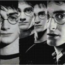 HARRY POTTER THROUGH THE YEARS CROSS STITCH PATTERN PDF ONLY