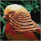 GOLDEN PHEASANT CROSS STITCH PATTERN PDF ONLY