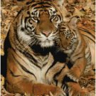 MAMA TIGER AND BABY #1 CROSS STITCH PATTERN PDF ONLY
