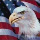 PATRIOTIC EAGLE CROSS STITCH PATTERN PDF ONLY