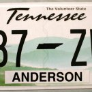 2014 Tennessee License Plate (987 ZWM)