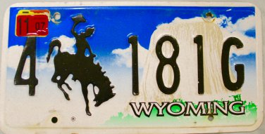 2007 Wyoming License Plate (4 181G)